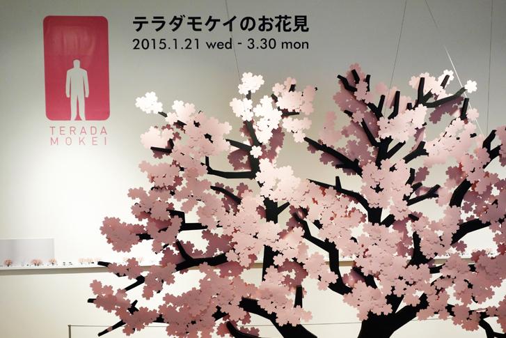 Cherry Blossom Viewing of TERADAMOKEI